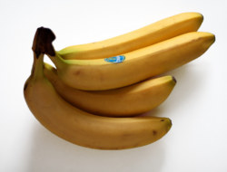 A Banana Quiz to Test Your Knowledge