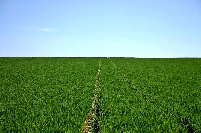 agriculture farming quiz