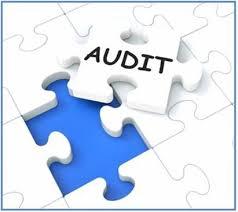 Types of Company Audits
