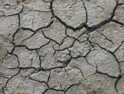 Dehydration: 10 Question Quiz