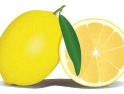 Lemon: 10 Question Quiz