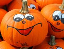 Pumpkin: 10 Question Quiz