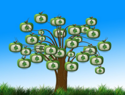 Quiz on Agricultural Economics : 10 MCQs