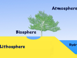 Online Quiz on Biosphere : 10 Quick Questions