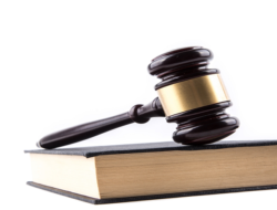 Quiz on Judicial System : 10 Multiple Choice Questions