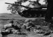 The Cold War and Postwar America
