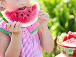 Nutrition Quiz : 10 Biology MCQs