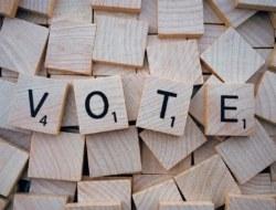 राजनीति विज्ञान-कक्षा 11-चुनाव और प्रतिनिधित्व – भाग 3