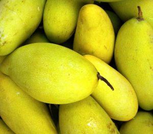 Mango Fruit Quiz : 10 MCQs