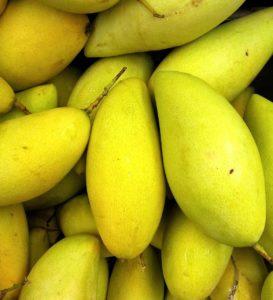 Mango 10 Facts