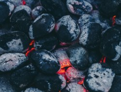 Coal & Petroleum : 10 Quizzes to Test Your Knowledge