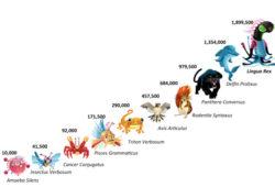 दस प्रशन जीव विज्ञान-कक्षा 11-प्राणी जगत